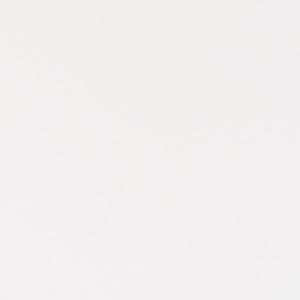 artic-white